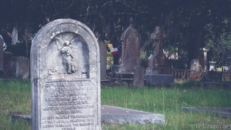 At An Old Cemetery, South Carolina