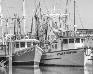 Working Boats, Charleston, South Carolina