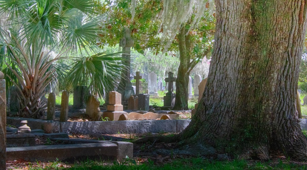 Under A Tree, Cemetery