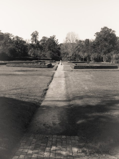 Formal Garden, Black And White