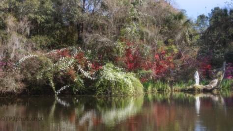 Plantation Garden Pond