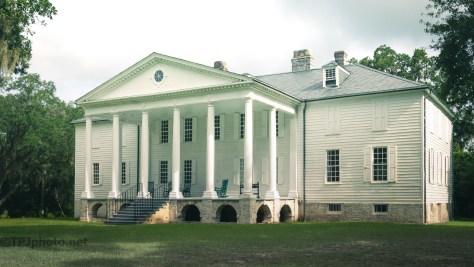 1791, Tree Is Still Standing Hampton Plantation