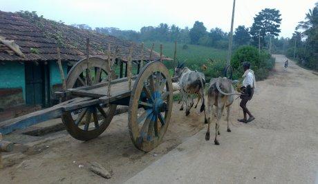 Udayagiri and Mysore 043