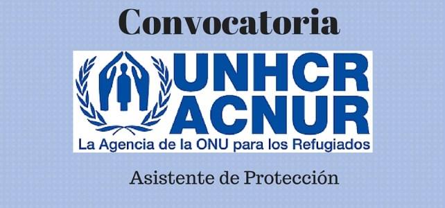 ACNUR/UNHCR Colombia Lanza Convocatoria – Asistente de Protección