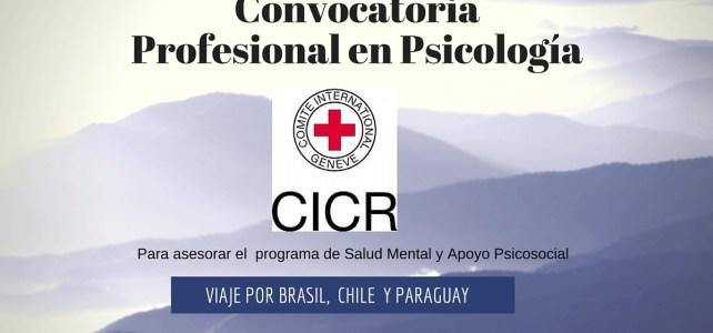 Viaje por Brazil, Chile y Paraguay trabajando con la Cruz Roja Internacional. CICR Lanza convocatoria regional programa de salud mental