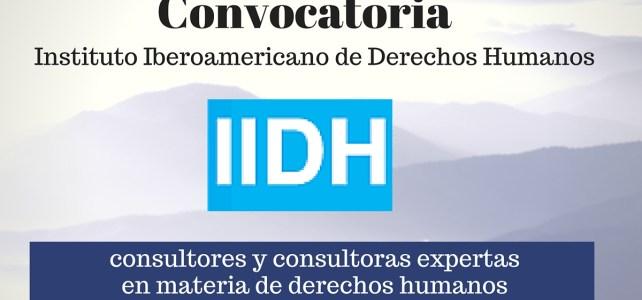 Instituto Interamericano de Derechos Humanos busca consultores y consultoras expertas en materia de derechos humanos