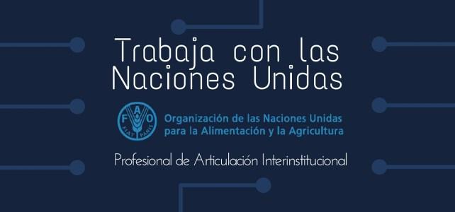 Naciones Unidas busca Profesional de Articulación Interinstitucional para trabajar con la FAO