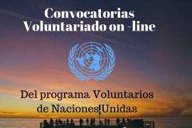 voluntariado on line