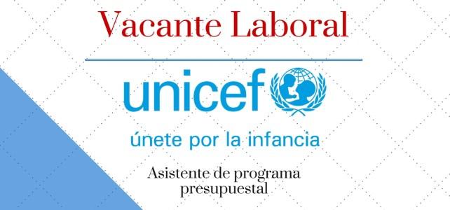 UNICEF busca asistente de programa presupuestal