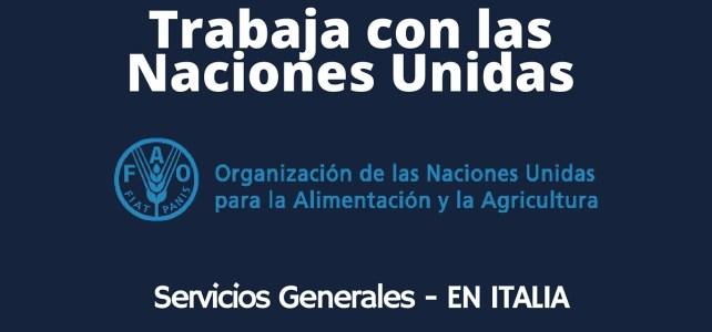 Trabaja con la FAO en Italia