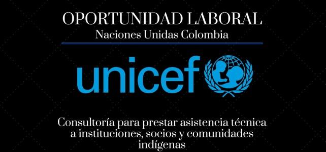 Unicef necesita consultores para asistencia técnica a comunidades indígenas
