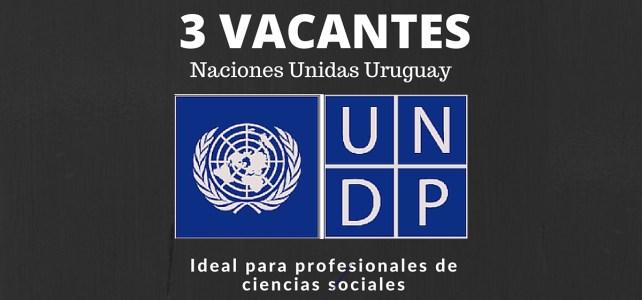 PNUD en Uruguay inicia proyecto y busca profesionales