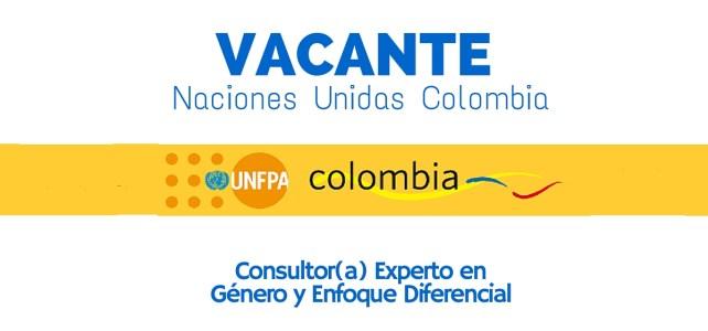 Convocatoría con Naciones Unidas: Consultor(a) en Género y Enfoque diferencial
