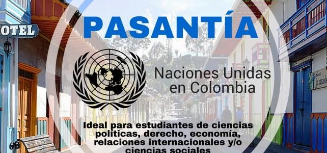 Haz tu pasantía profesional con el PNUD – ONU en Colombia