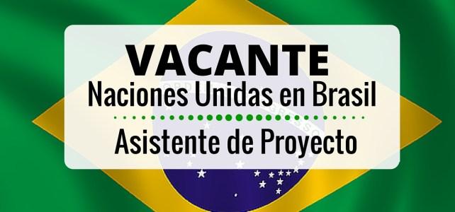 El PNUD en Brasil abre vacante laboral