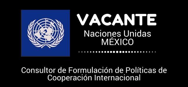 El PNUD en México busca consultor