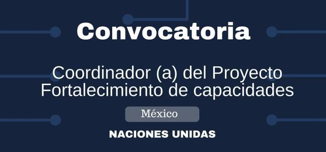 Convocatoria Coordinador/a del proyecto Fortalecimiento de capacidades
