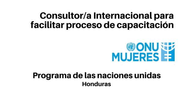 Consultor/a Internacional para facilitar proceso de capacitación