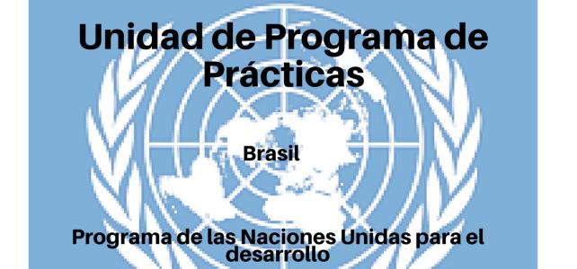 Vacante Unidad de Programa de Prácticas en Brasil