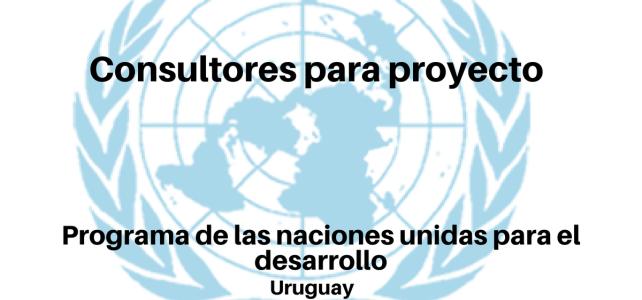 Vacantes Consultores ONU Uruguay.