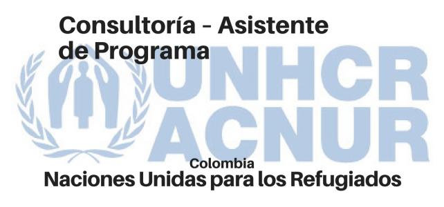 Consultoría asistente de Programa – ACNUR/UNHCR