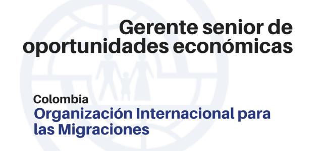 Gerente senior de oportunidades económicas  – OIM