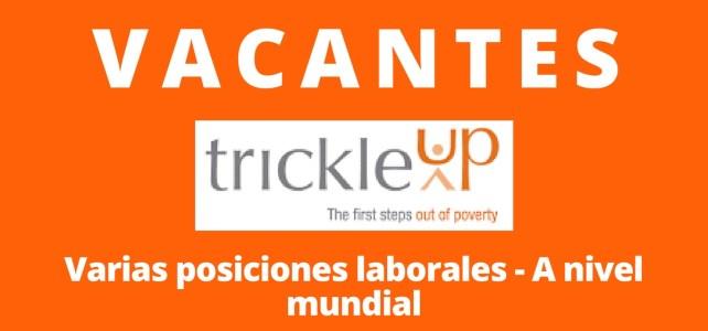 Vacantes laborales con la organización Trickle-Up. Diversos cargos