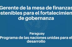 Gerente de la mesa de finanzas sostenibles para el fortalecimiento de gobernanza