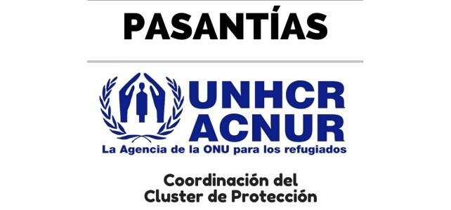 Convocatoria para pasantía en la Coordinación del Cluster de Protección de ACNUR