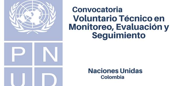 Voluntario con Naciones Unidas- Técnico en Monitoreo, Evaluación y Seguimiento  (PNUD)