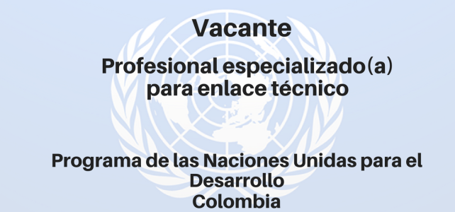 Vacante Profesional Especializado (a) para Enlace técnico PNUD