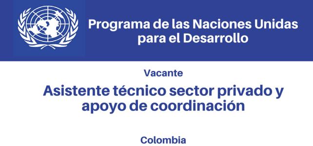 Vacante asistente técnico sector privado y apoyo de coordinación PNUD
