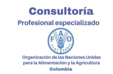 Vacante Consultor en Pérdidas y Desperdicios de Alimentos con la FAO