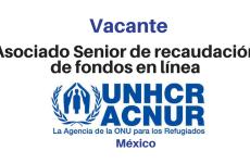 Vacante en recaudación de fondos ACNUR