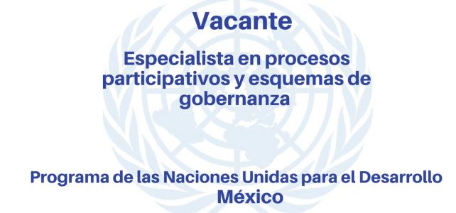 Vacante Especialista en procesos participativos con Naciones Unidas