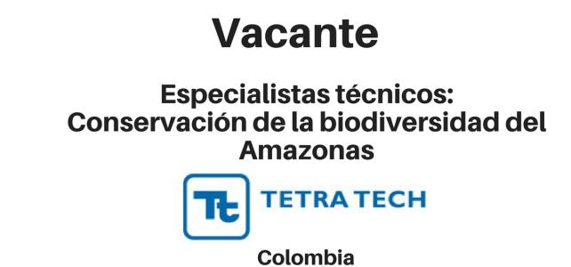 Vacante especialistas técnicos  Plataforma de Aprendizaje Tetra Tech