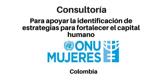 Consultor para apoyar la identificación de estrategias para fortalecer el capital humano