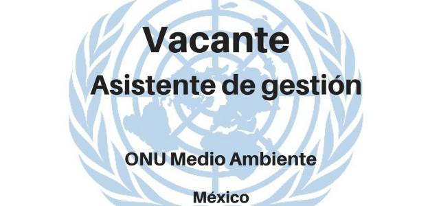 Vacante Asistente de gestión con Naciones Unidas