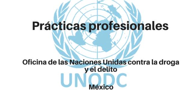 Prácticas profesionales con UNODC
