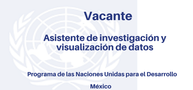 Vacante Asistente de Investigación y visualización de datos PNUD