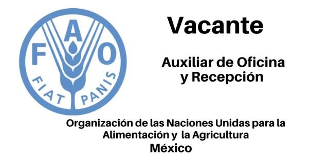 Vacante Auxiliar de Oficina y Recepción FAO