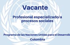 Vacante profesional especializado en el área de eliminación de la violencia contra las mujeres ONU Mujeres