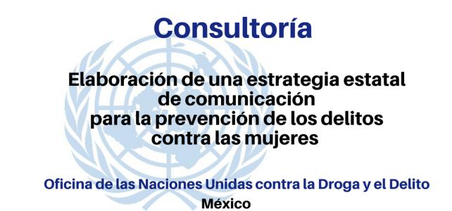 Convocatoria de UNDOC para Consultoría sobre prevención de los delitos contra las mujeres y la violencia de género