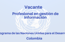 Vacante Profesional en Gestión de Información PNUD