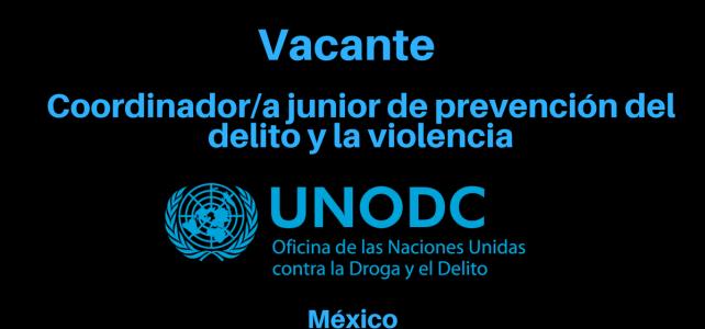 Vacante Coordinador/a junior de prevención del delito y la violencia con UNODC