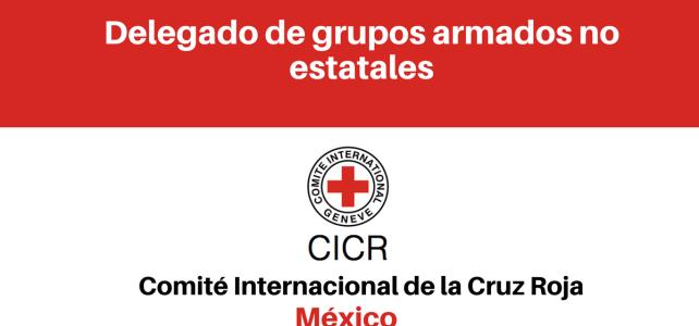 Vacante delegado de grupos armados no estatales CICR