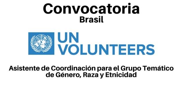 Voluntariado Remunerado con Naciones Unidas en Brasil