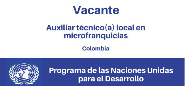 Vacante Auxiliar Técnico (a) Local en Microfranquicias PNUD
