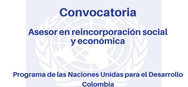 Convocatoria Asesor en Reincorporación Social y Económica PNUD