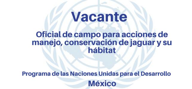Vacante Oficial de campo para acciones de manejo y conservación de jaguar y su hábitat PNUD